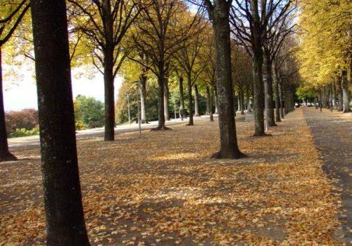 Parc de Valency en Automne, Prilly, Lausanne